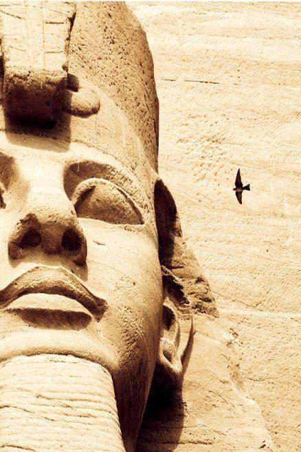 Genesis 41:45 Pharaoh gave Joseph